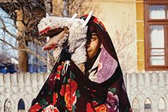 Belgrade Photo Month: Carpethian