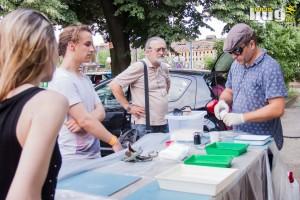 09-DEV9T :: sreda @ Ciglana : Devet Favela Umetnosti | Art | Muzika | Festival | Beograd