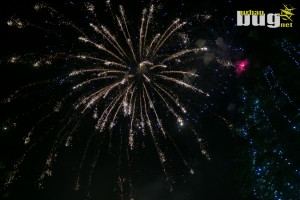 11-EXIT Festival 2017 :: dan 1. | Novi sad | Srbija | Open air | Music Festival