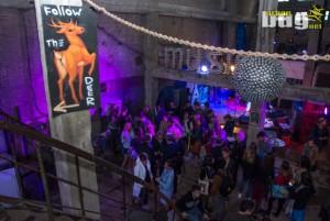 04-DEV9T 2018 :: dan 8. | Beograd | Srbija | Urban Life | Festival Umetnosti | Stara Ciglana