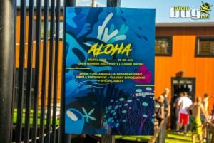 01-Aloha - Signal 2019 Open Summer :: dan 1. | Beograd | Srbija | Dnevni zivot | Tech-House