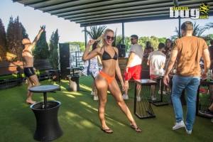 42-Aloha - Signal 2019 Open Summer :: dan 2.   Belgrade   Serbia   Daylife   River Party