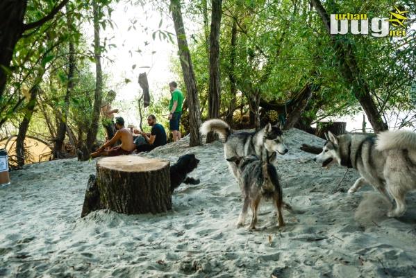 21-Elysium Island Festival 2019 :: dan 1. | Sremski Karlovci | Srbija | Dnevni & Nocni zivot | Trance