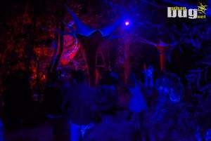 39-Elysium Island Festival 2019 :: dan 3. | Sremski Karlovci | Srbija | Dnevni & Nocni zivot | Trance
