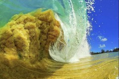 Fenomenalne fotografije talasa!