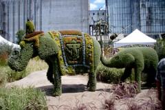 Biljni svet čuda!