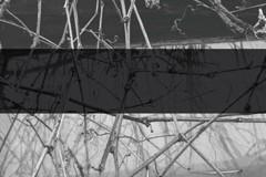 Scalameriya – Fullmetal Cyberspace EP (Genesa 002 V)