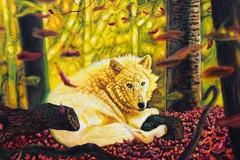 Izložba slika Duhovi šume, autora Saše Montilja