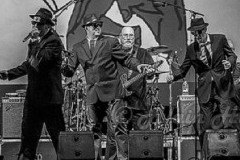 Original Blues Brothers Band zatvaraju Nišville