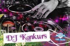 DJ KONKURS: Serbia Wonderland Festival pruža priliku mladim talentima!