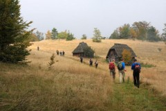 Sedma Trka preživljavanja 2. i 3. oktobra na planini Zlatar!