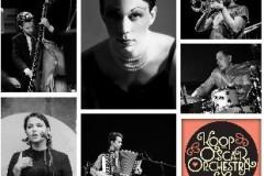 Musicology Barcaffè Sessions tokom leta na Kalemegdanu