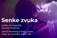 Senke zvuka: Izložba rok fotografija Nemanje Đorđevića u Vranju