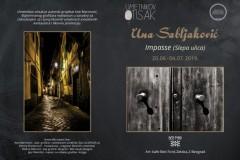 Umetnikov otisak predstavlja izložbu Une Sabljaković