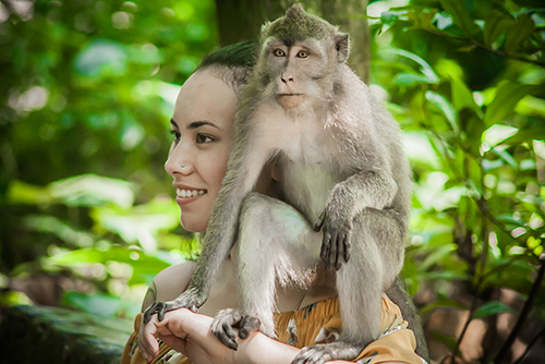 Izložba JA MAJMUN | Fotograf Aleksandar Jovkovic  |  Sveta šuma majmuna, ostrvo Bali, Indonezija