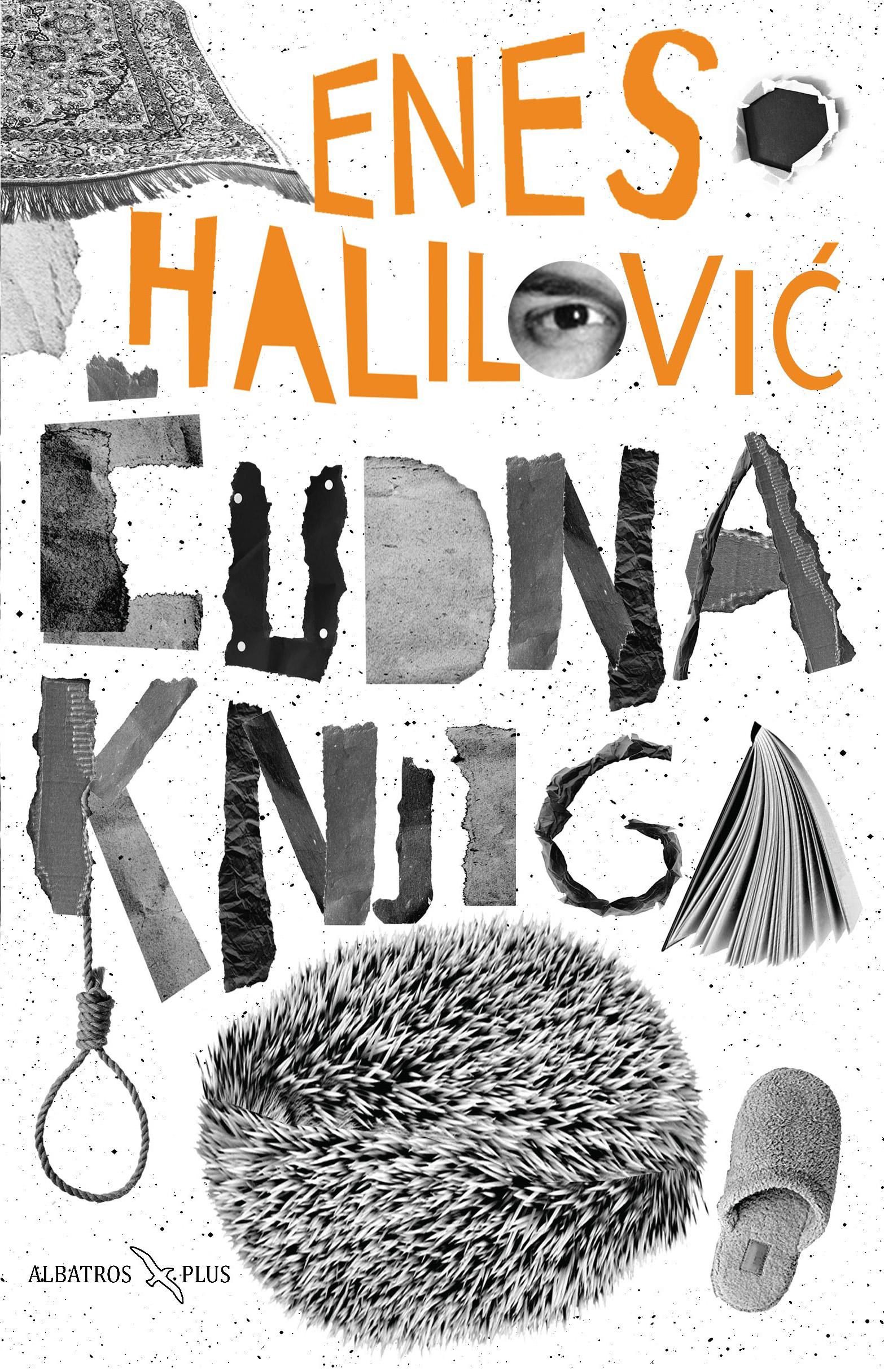 Ernes Halilovic, Cudna knjiga
