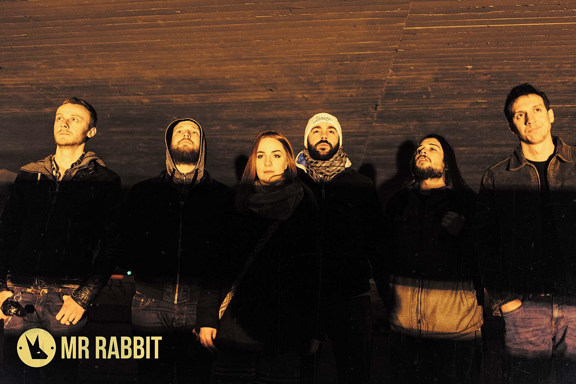 Mr. Rabbit / Foto: Bojan Jovanović