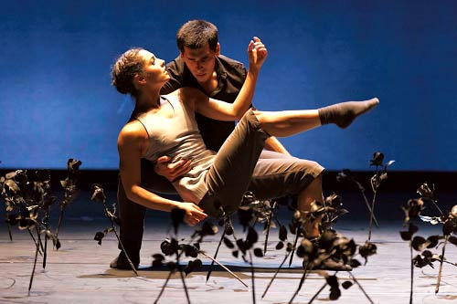 Ballet Basel | 12. Beogradski festival igre: Komunikacija u pokretu! |  2015 | Srbija