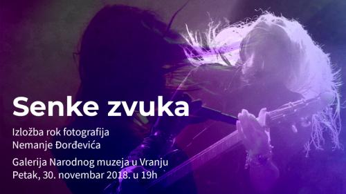 Senke zvuka, Nemanja Đorđević
