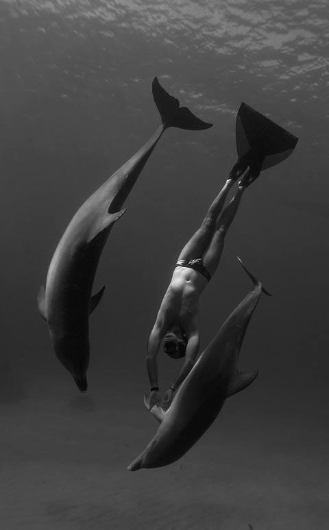 NEČUJNO 3: Treći festival kratkog podvodnog filma! | 2015 | Dom omladine | Asocijacije Ronilačkih Instruktora